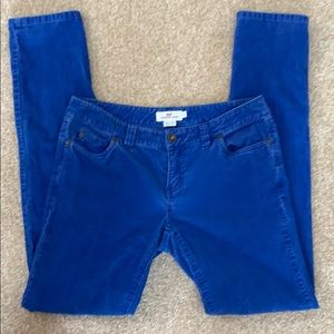 Vineyard Vines Royal Blue Corduroy Pants, 2
